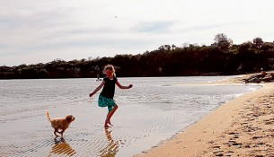 Splish splash: A successful year-long trial of an off-leash area along Mentone beach means dog owners can  relax with their pets at all times. Picture: Tracey Cheeseman