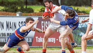 Dog's day: Mornington dispatched Karingal by 59 points. Picture: Scott Memery
