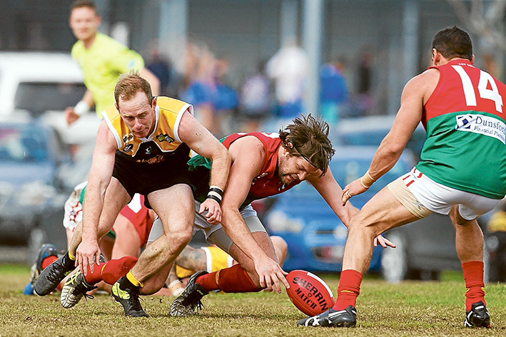 Stonecats steamroll Pines: The Pythons had no answer for Frankston YCW, going down by 56 points. Picture: Scott Memery